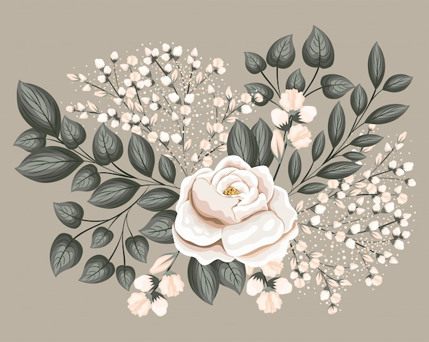 White rose flower with leaves painting design, natural floral nature plant ornament garden decoration Premium Vector