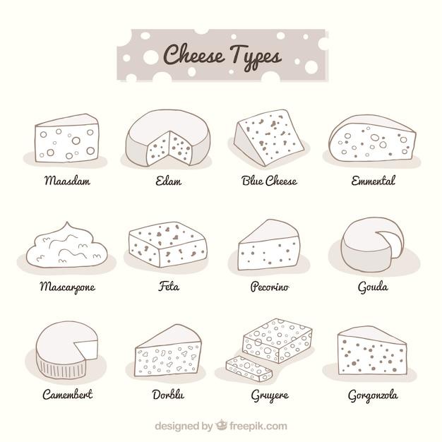 Wide variety of cheeses hand drawn Free Vector