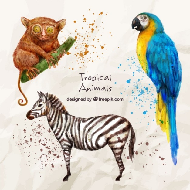 Wild and exotic animals in watercolor\ effect