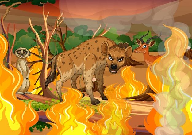 Wild animal in wildfire forest Premium Vector