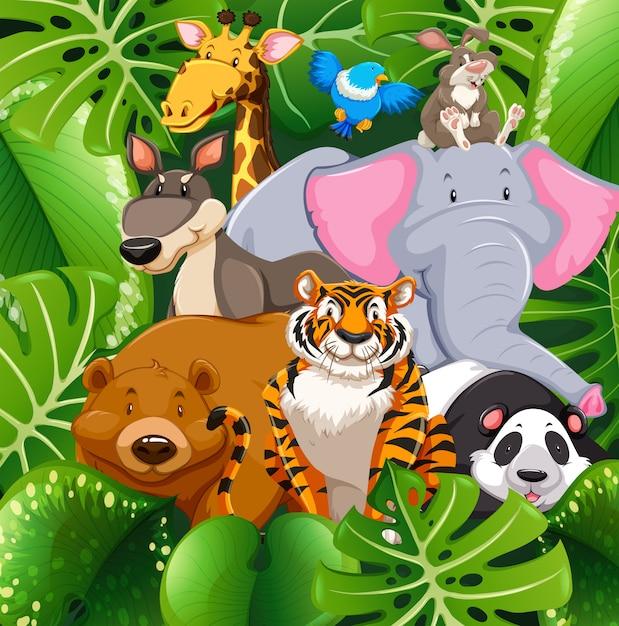 Wild animals in the bush Free Vector