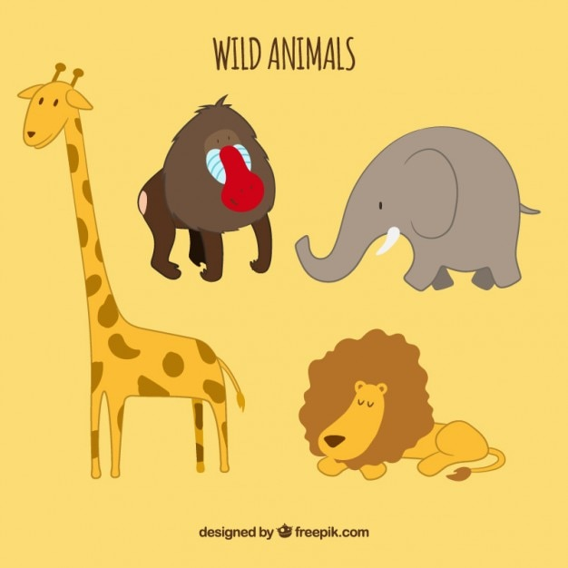 Wild Animals Cartoon Collection