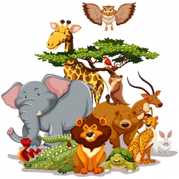 Wild animals collection | Premium Vector