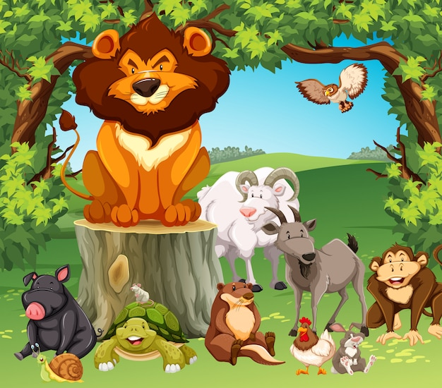 Wild animals in the forest Free Vector