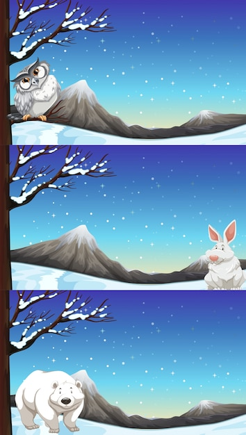 Wild animals in winter time illustration