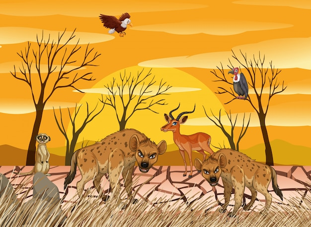 Wild animals living in dry land Premium Vector