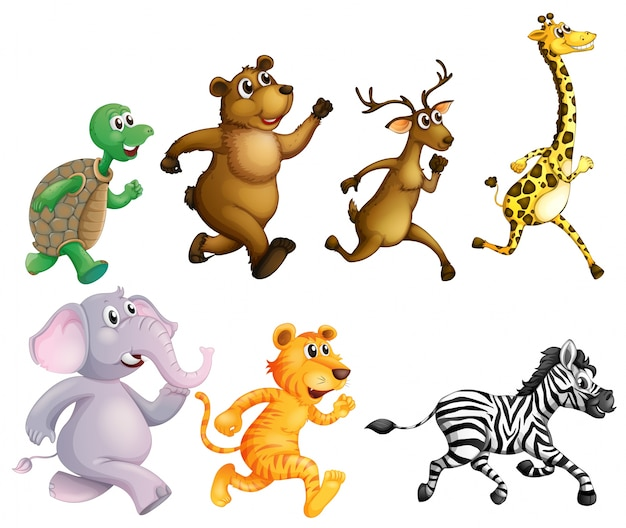 Wild animals running on white background\ illustration