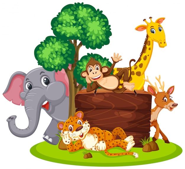 Wild animals with wooden board Premium Vector