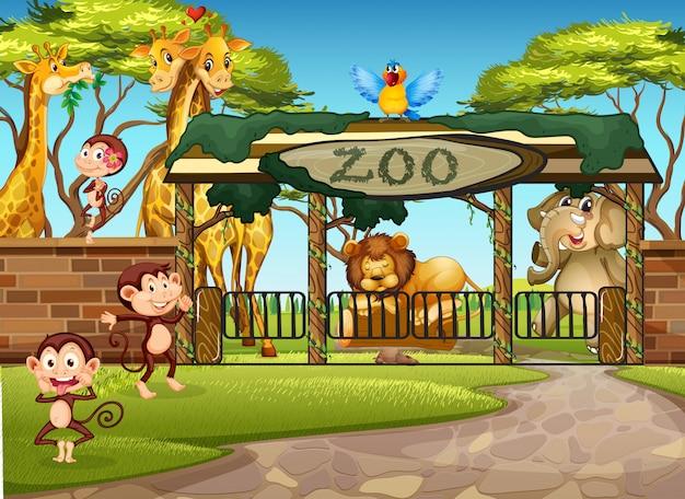 Wild animals in the zoo Premium Vector