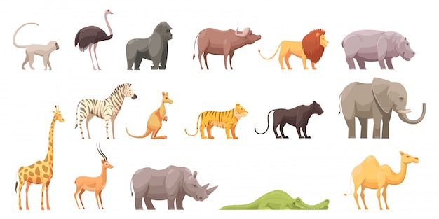 Wild animals Free Vector