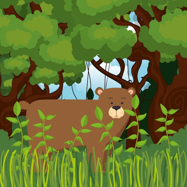 Wild bear grizzly in the jungle scene Free Vector