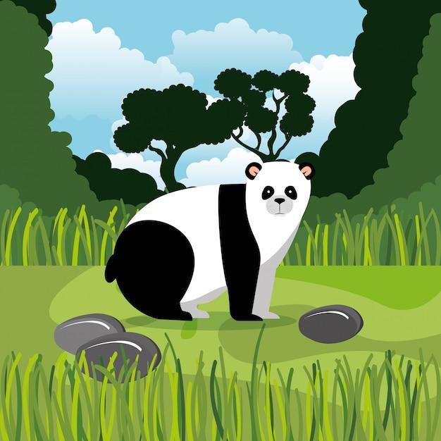 Wild bear panda in the jungle scene Free Vector