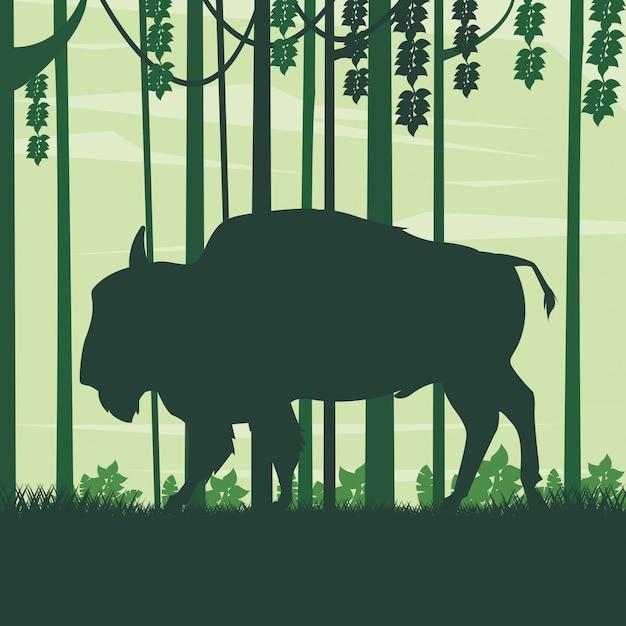 Wild buffalo animal in the field landscape Premium Vector