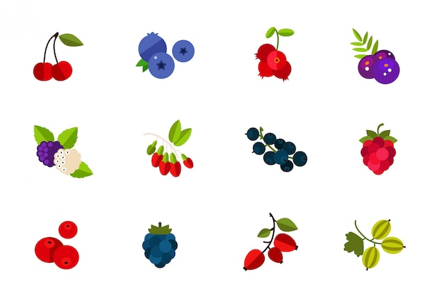 Wild and cultivated berries icon set Free Vector