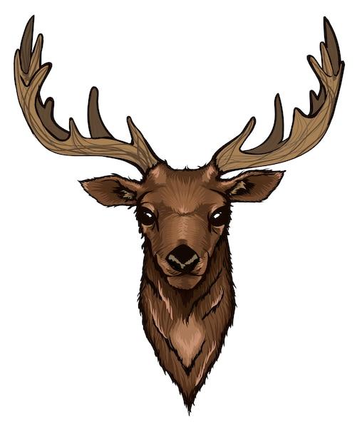 Wild deer head portrait Free Vector