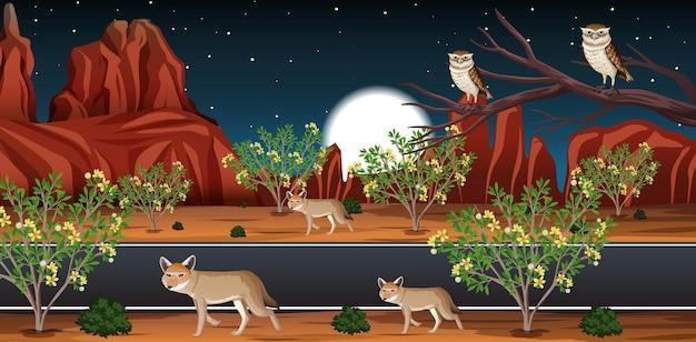 Deserto selvaggio con una lunga strada paesaggio di scena notturna Vettore gratuito