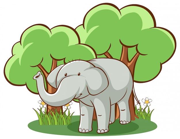 Wild elephant on white Free Vector