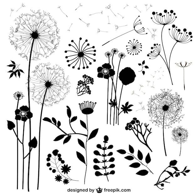 Wild flowers silhouettes Free Vector