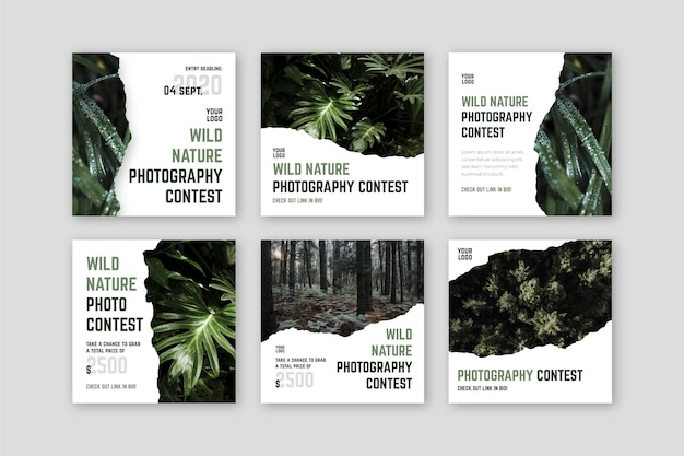 野性写真コンテストinstagram投稿 Premiumベクター