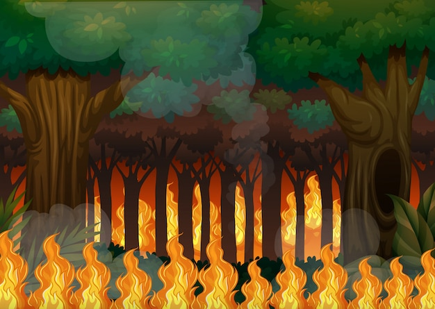 A wildfire in forest Premium Vector