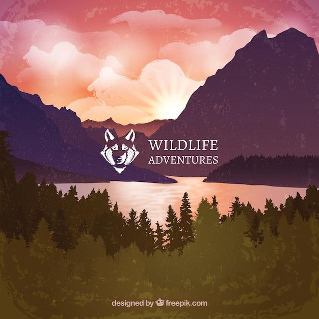 Wildlife adventures landscape