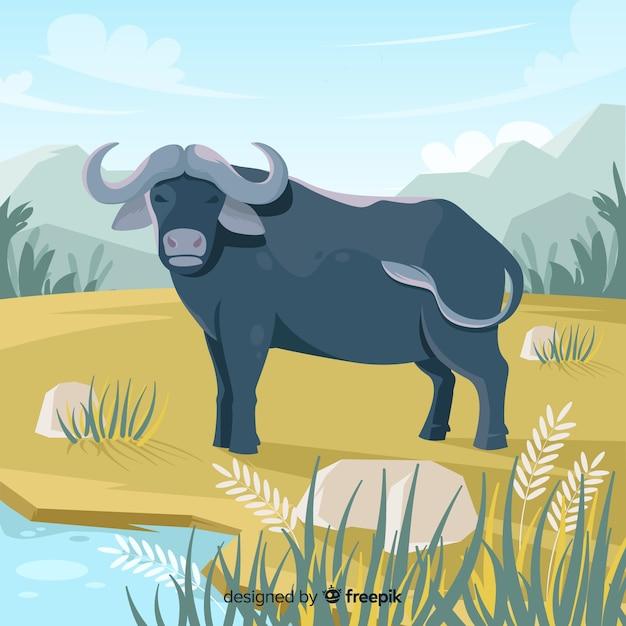 Wildlife buffalo cartoon illustration Free Vector
