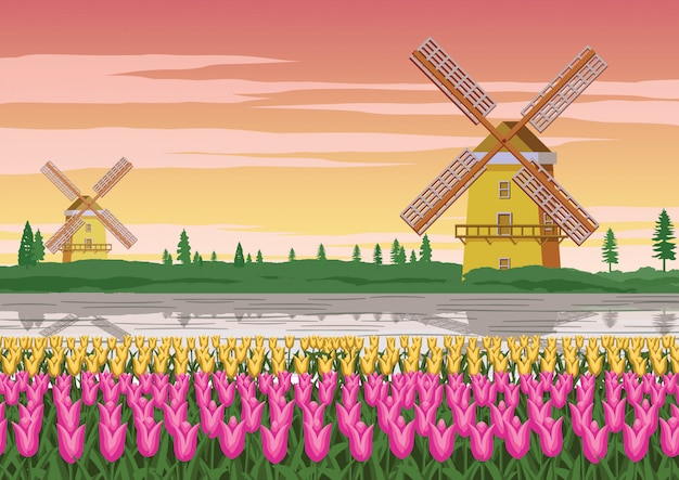 Wind mill and tulip garden,famous symbol of holland Premium Vector