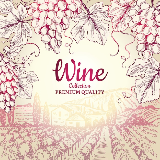 Винный фон. виноградные листья ветви бутылки штопор символы для рамки ресторана меню Premium векторы