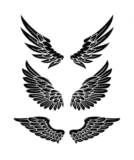 Wings collection set Premium Vector
