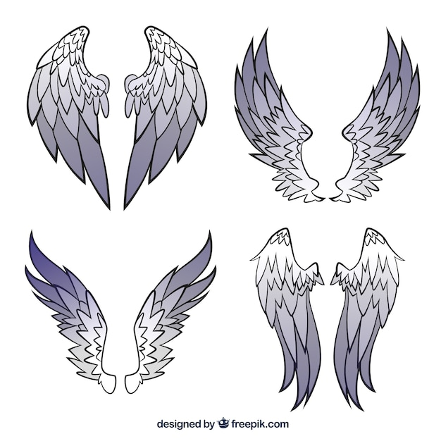 Wings collection Free Vector