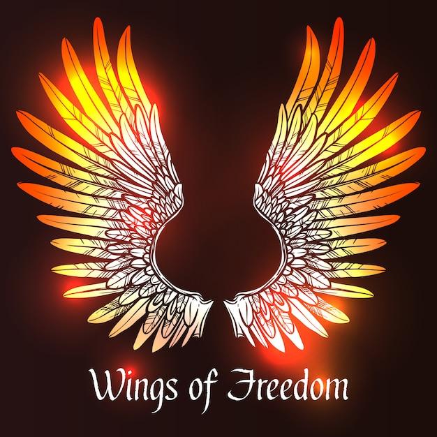 Wings sketch illustration Free Vector