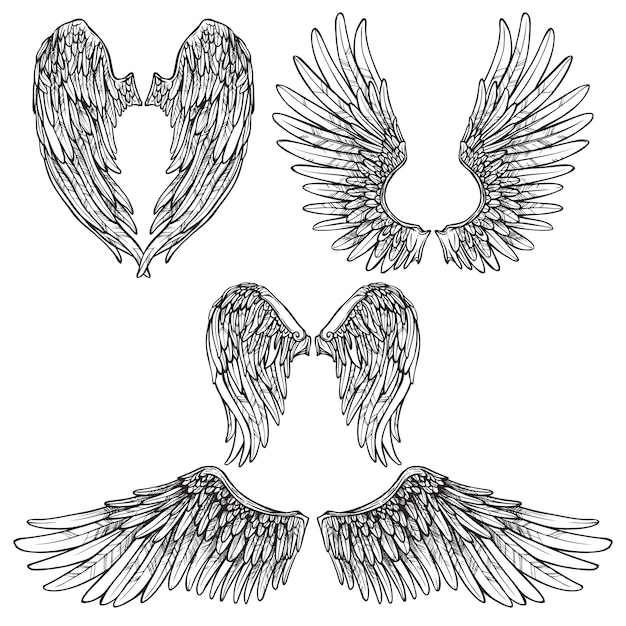 Wings sketch set Free Vector