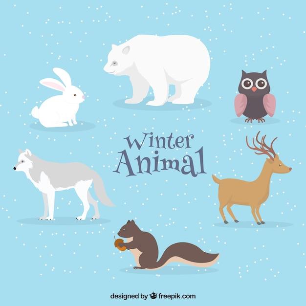Winter animal pack in flat design