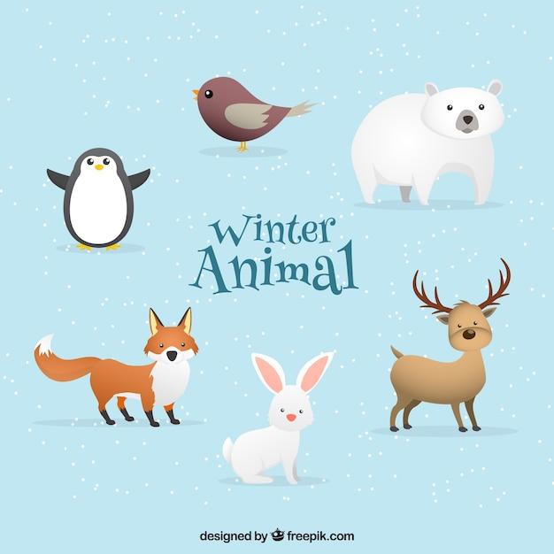 Winter animal pack of six
