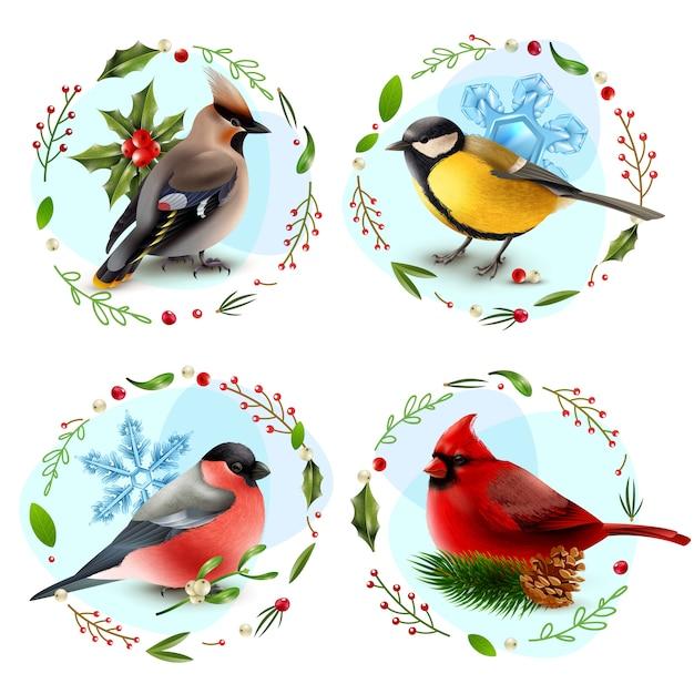 Winter birds design concept Free Vector