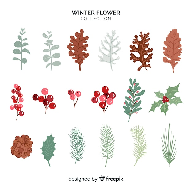 Winter flower collection Free Vector