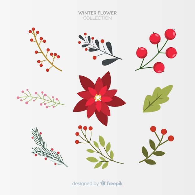 Winter flowers collection Free Vector