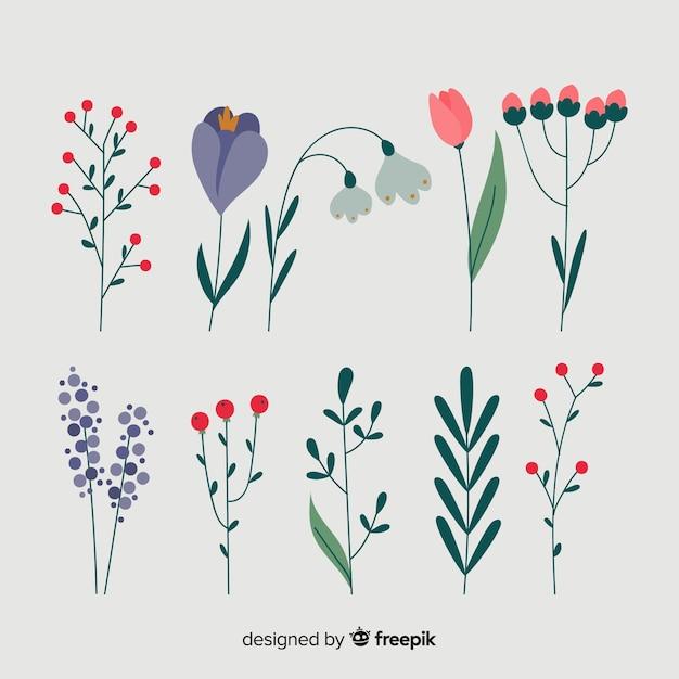 冬の花のコレクション Premiumベクター