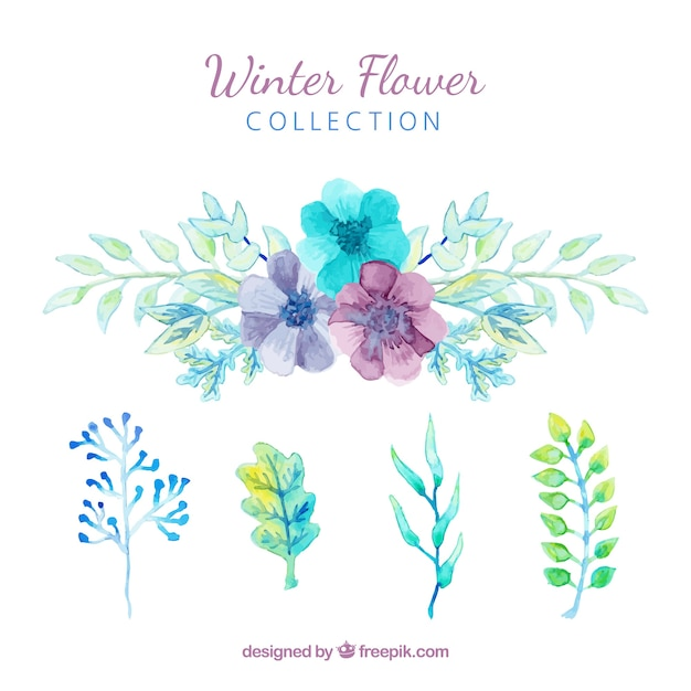 Winter flowers in blue, green and purple\ watercolour