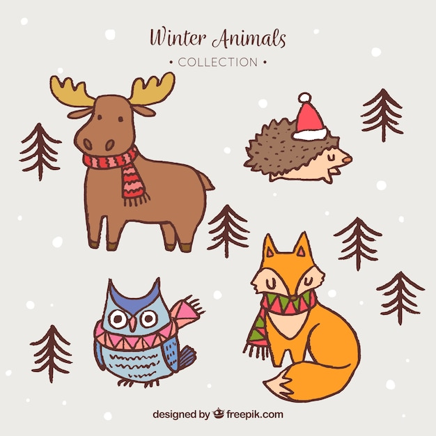 Winter forest animal
