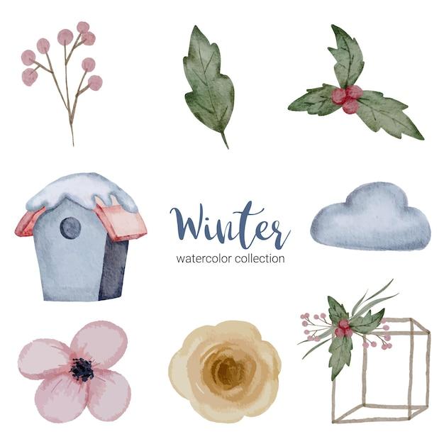 Зимняя коллекция акварелей с ветками, листьями и цветами Бесплатные векторы