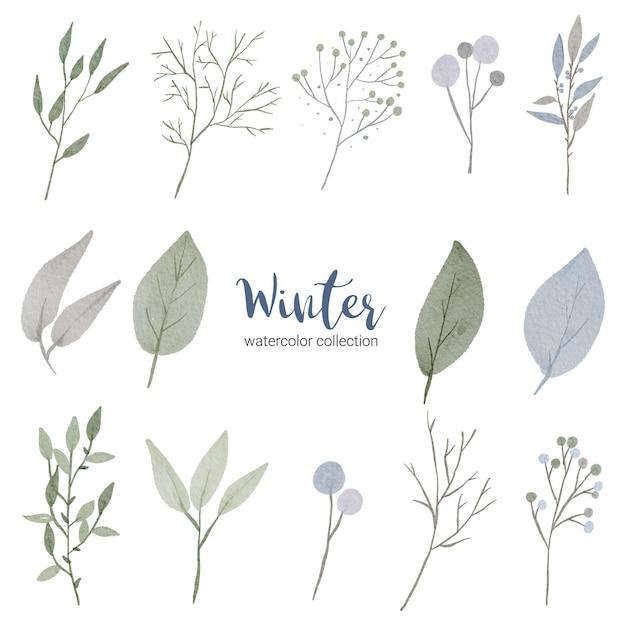 さまざまな種類の葉を持つ冬の水彩画コレクション 無料ベクター