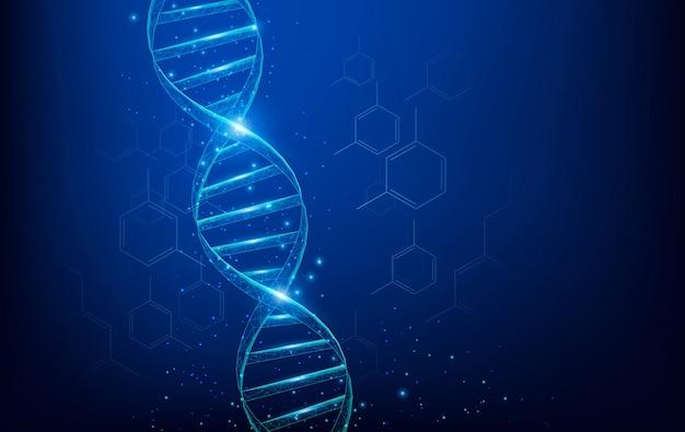 Каркасные молекулы днк имеют низкополигональную структуру, состоящую из точек, линий и фигур на синем фоне. концепция науки и техники Premium векторы