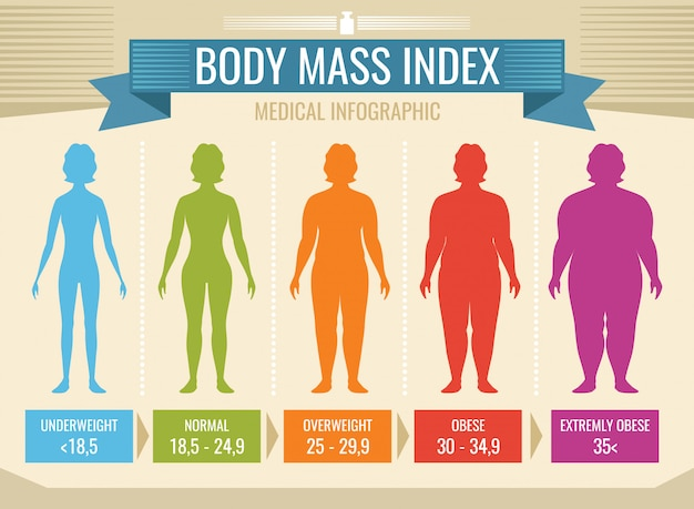 woman body mass index vector medical infographic body. Black Bedroom Furniture Sets. Home Design Ideas