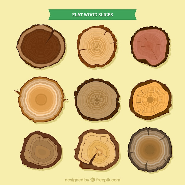 Wood slices of different types of trees Free Vector