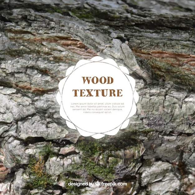 Wood texture with moss
