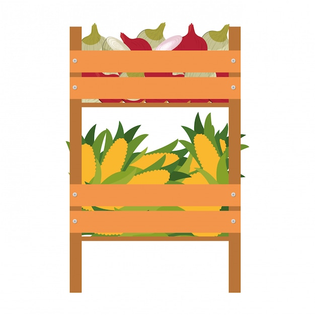 Wooden box with vegetables isolated icon Premium Vector