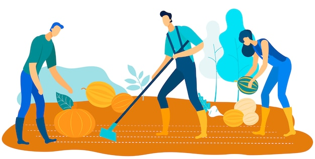 Workers harvest farm  grow vegetables and fruits Premium Vector