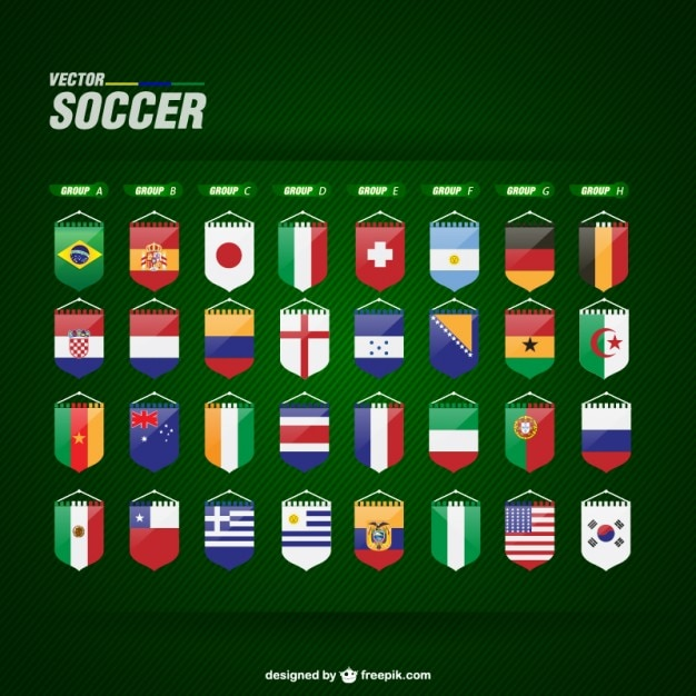 World team flags Free Vector