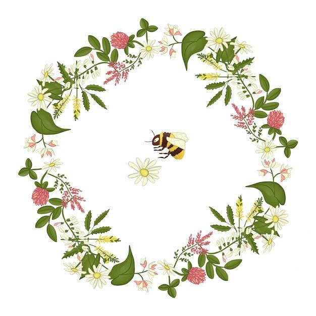 Wreath of acacia, heather, camomile. Premium Vector